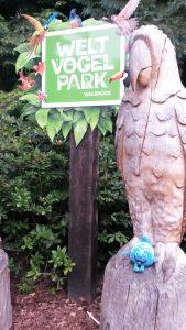 Salinchen @Vogelpark Walsrode